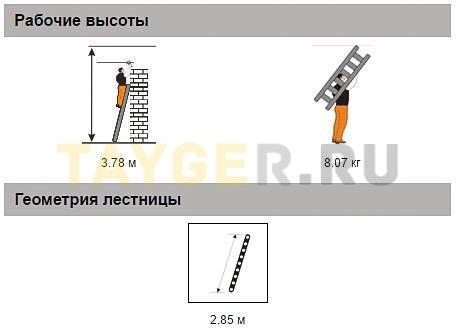 Лестница приставная 10 ступеней Эйфель Комфорт Профи Пирамида Рабочая высота параметры
